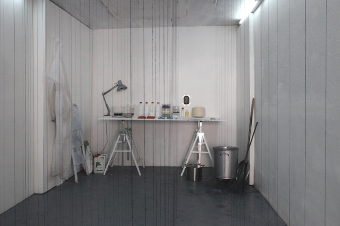 http://www.borisraux.com/files/gimgs/42_instal-flers-lab.jpg
